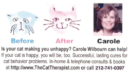 Cat Therapist